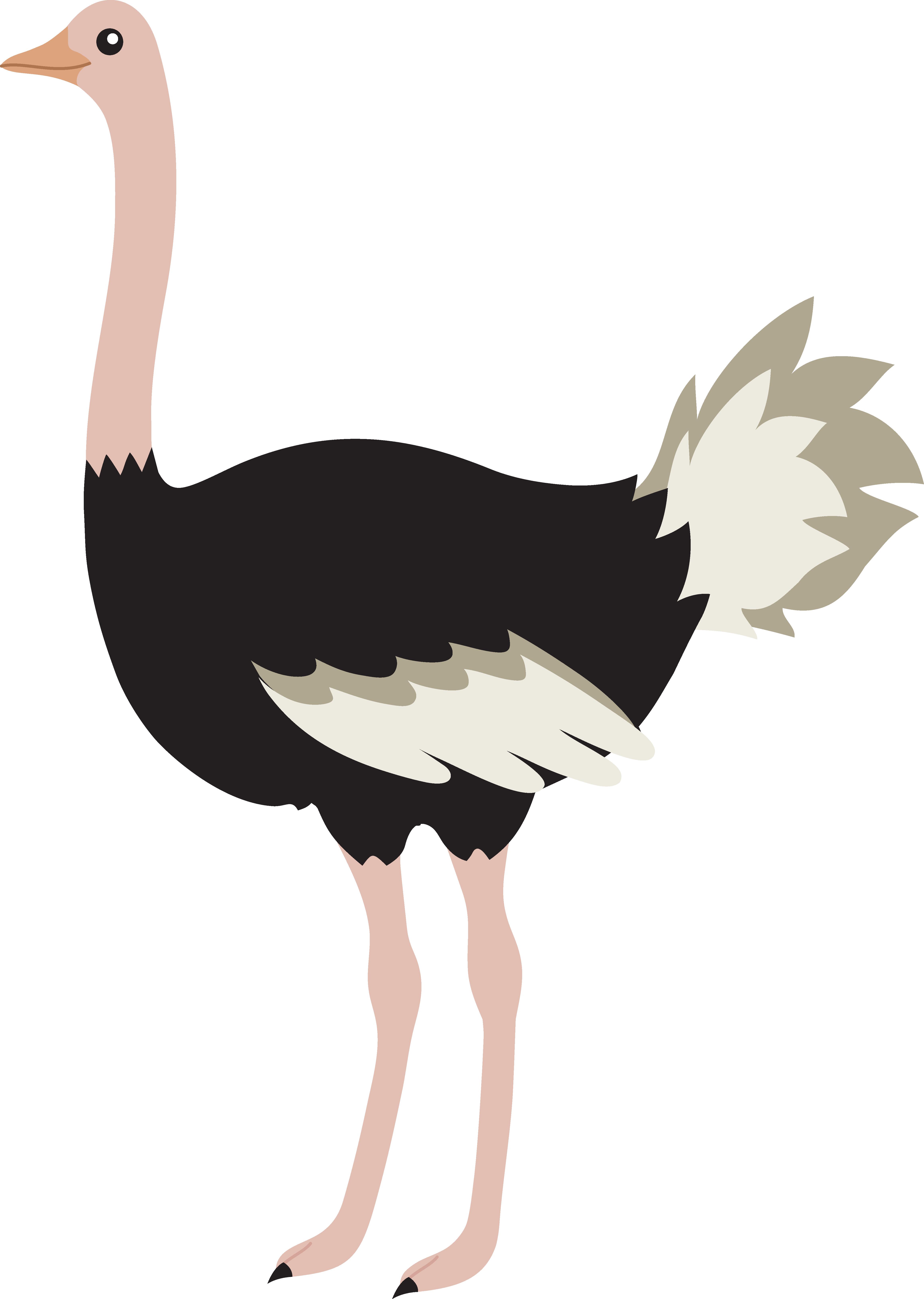 Queen clipart gambar. Cute ostrich bird free