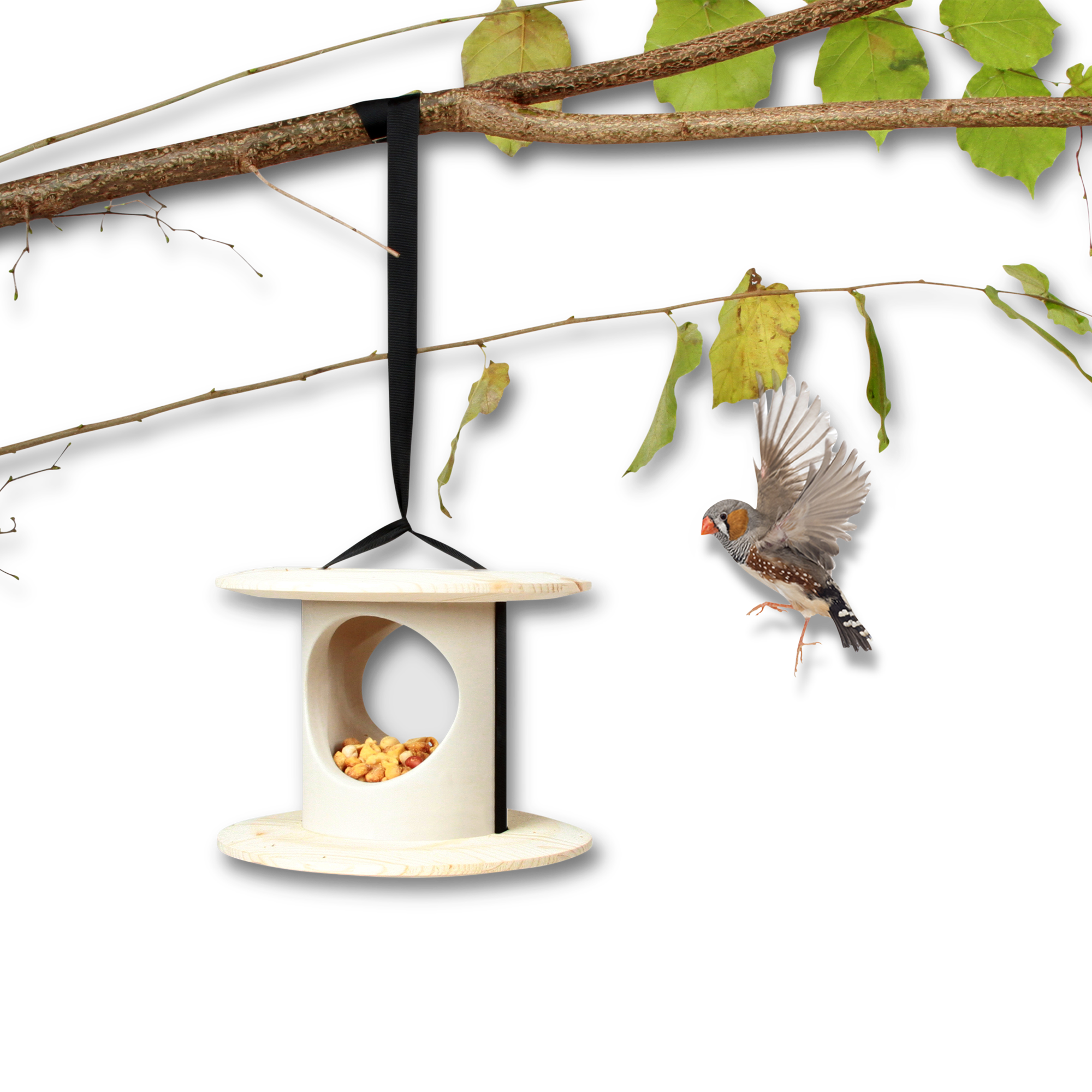 nest clipart bird feeder #131565877