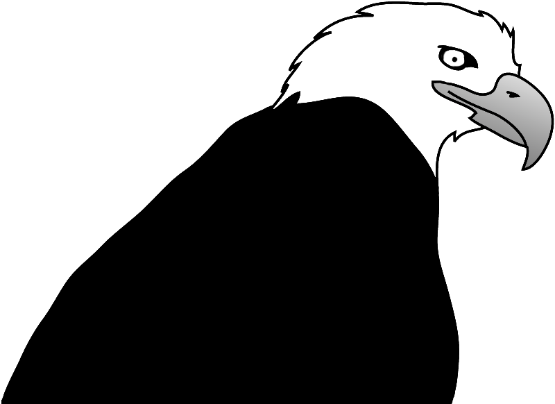 Clipart gallery eagle profile. Bald drawings