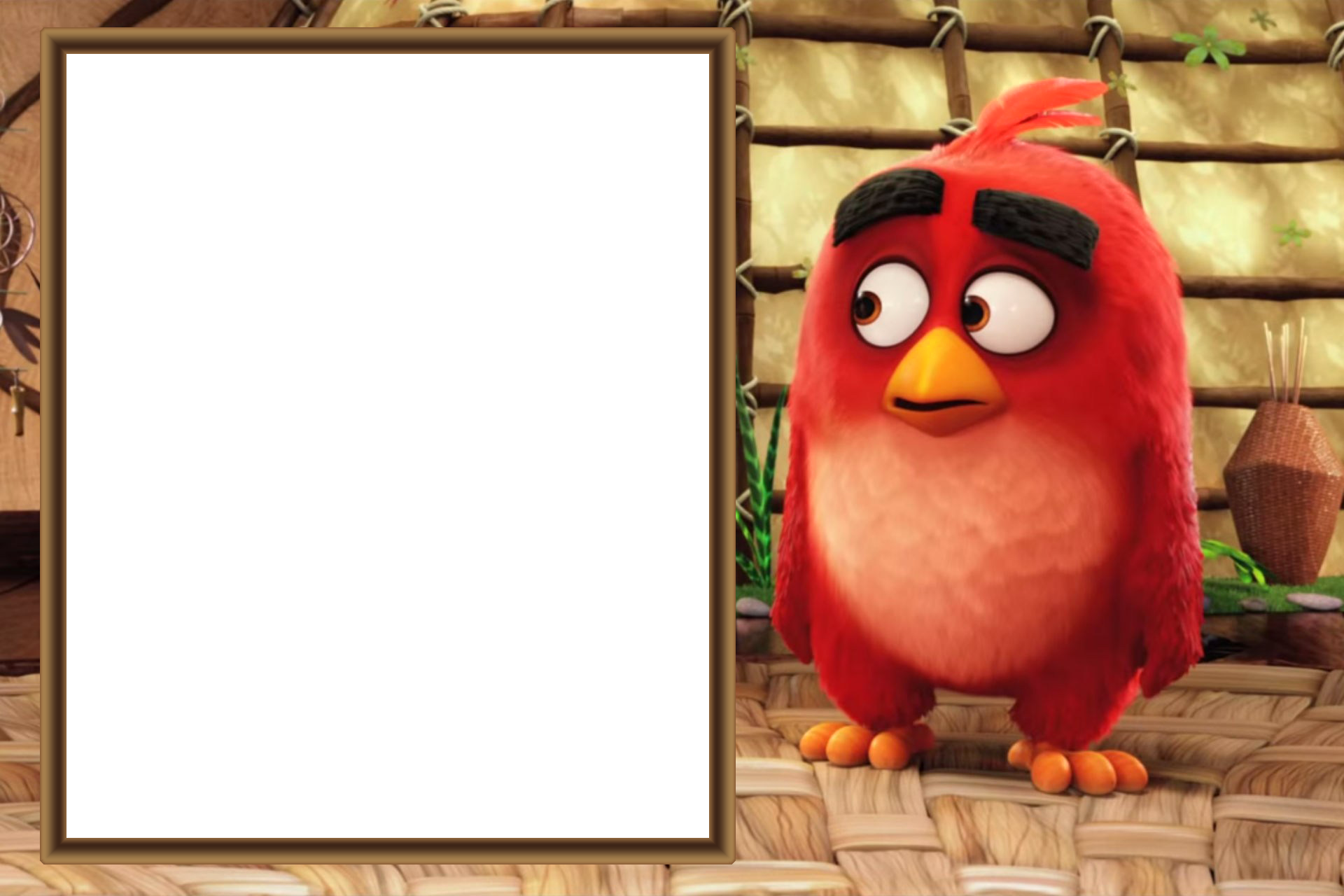 Clipart birds frame. Angry movie kids png