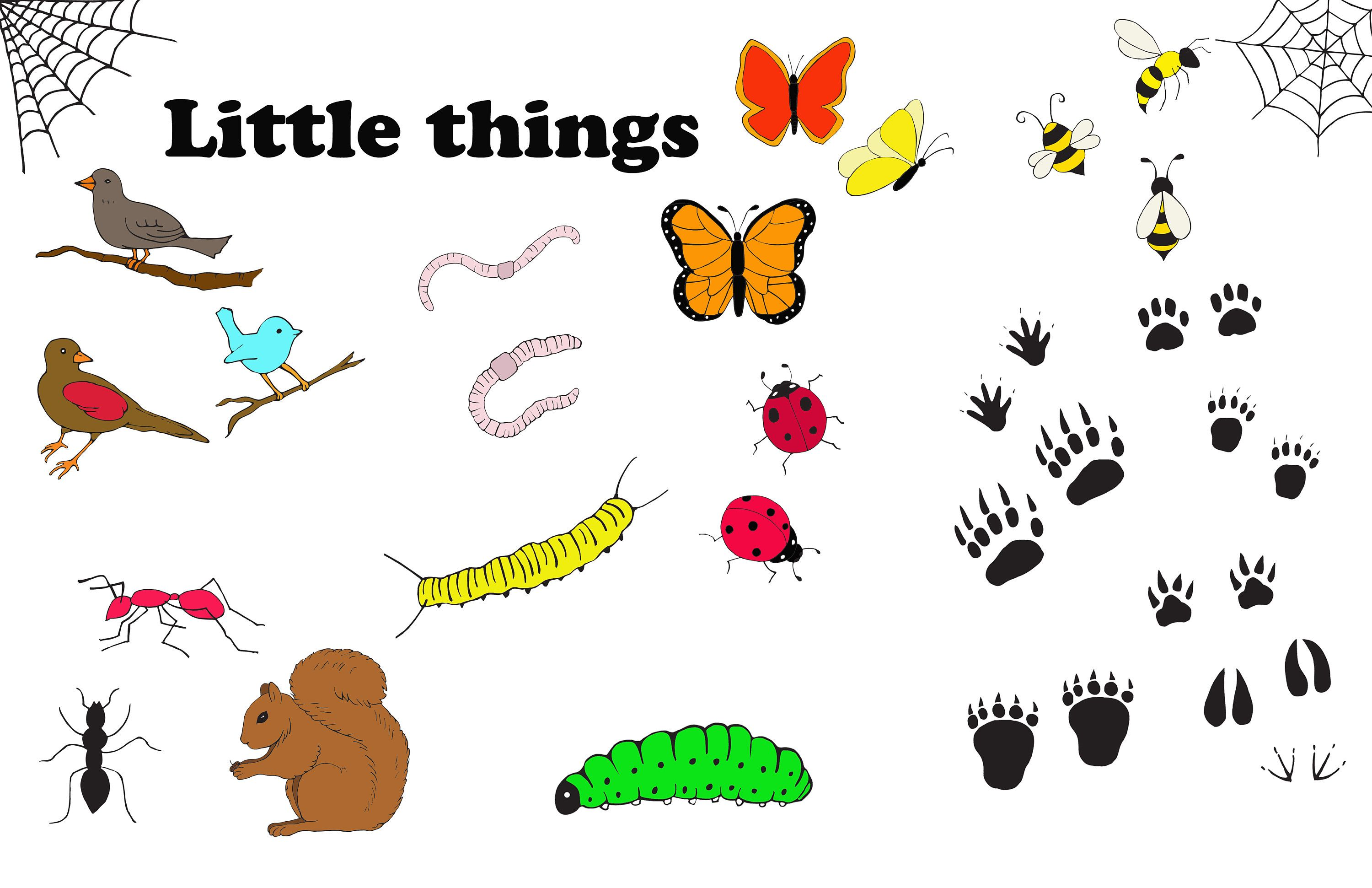 Clipart birds insect. Bugs clip art png