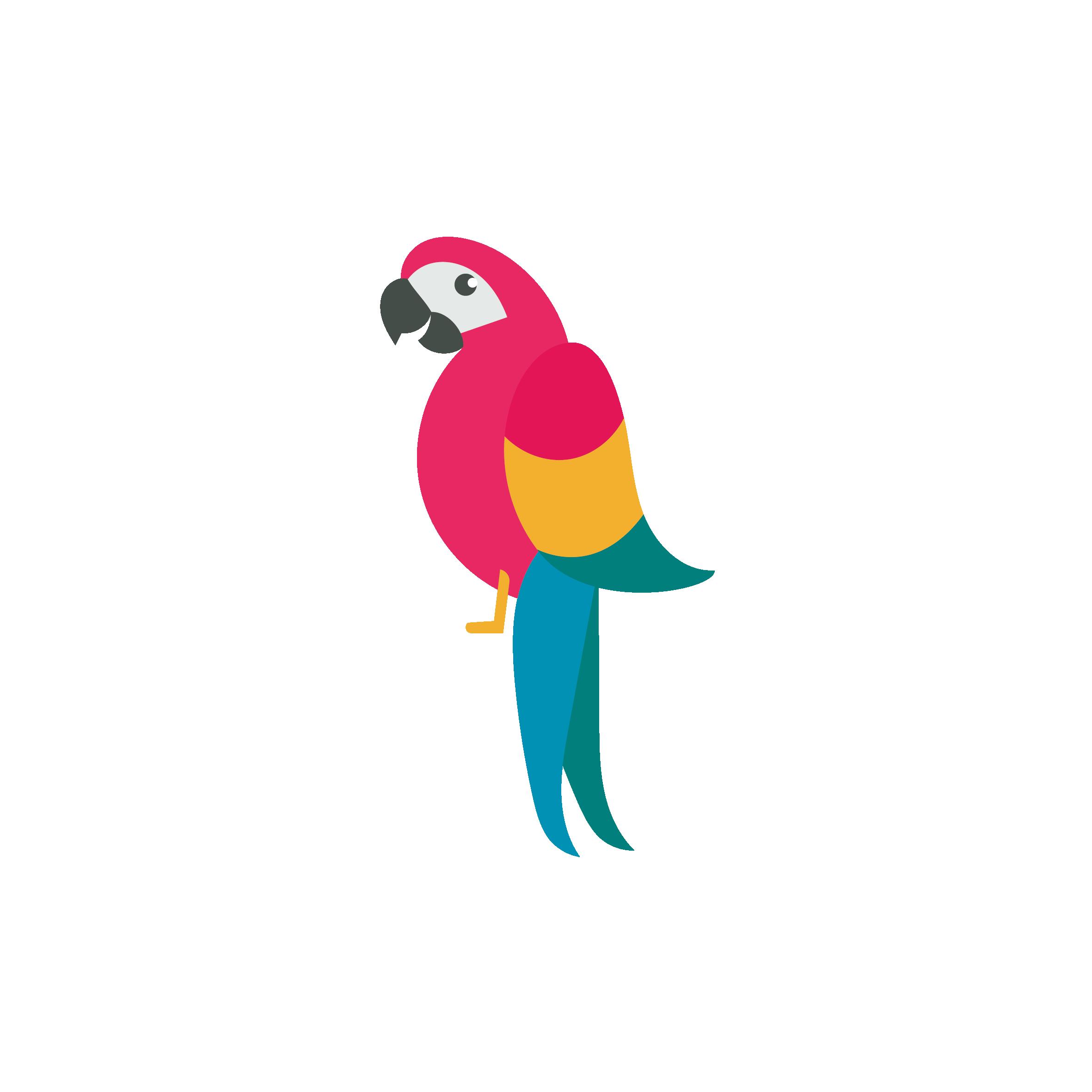 Parrot clipart bird's. Draw birds drawing clip