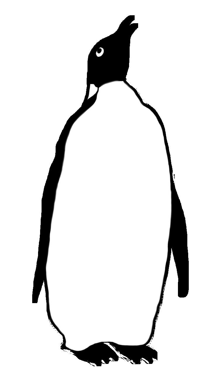 penguin clipart gentoo penguin