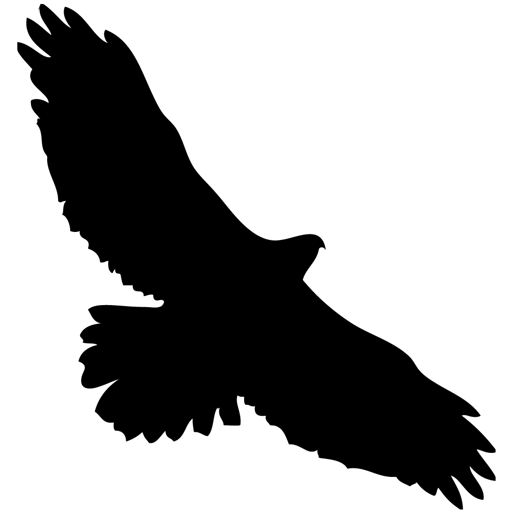 Tailed hawk silhouette at. Clipart birds red kite