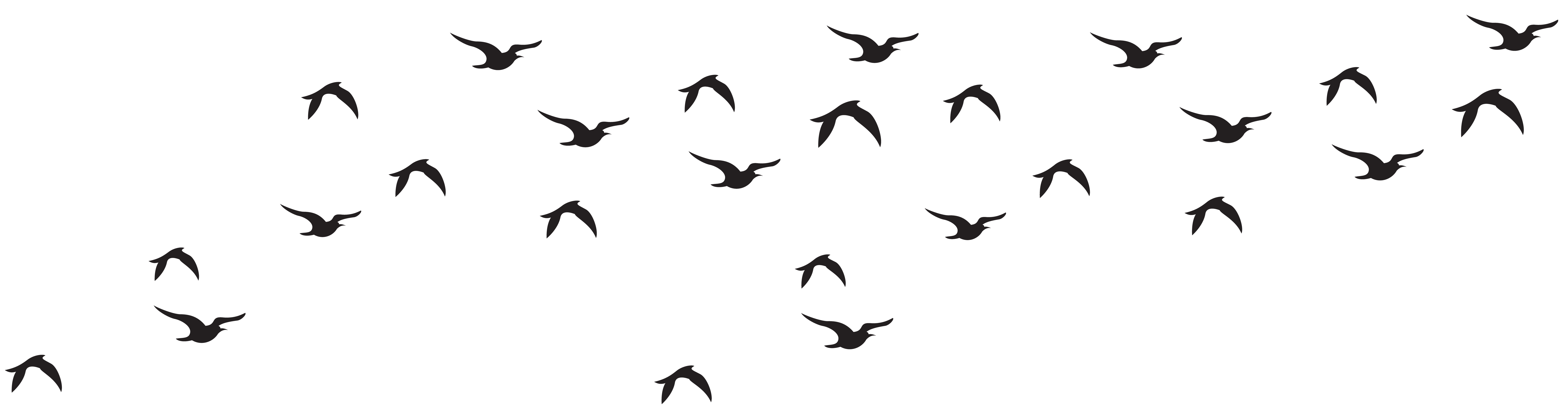 Clipart birds simple. Flock of pencil and