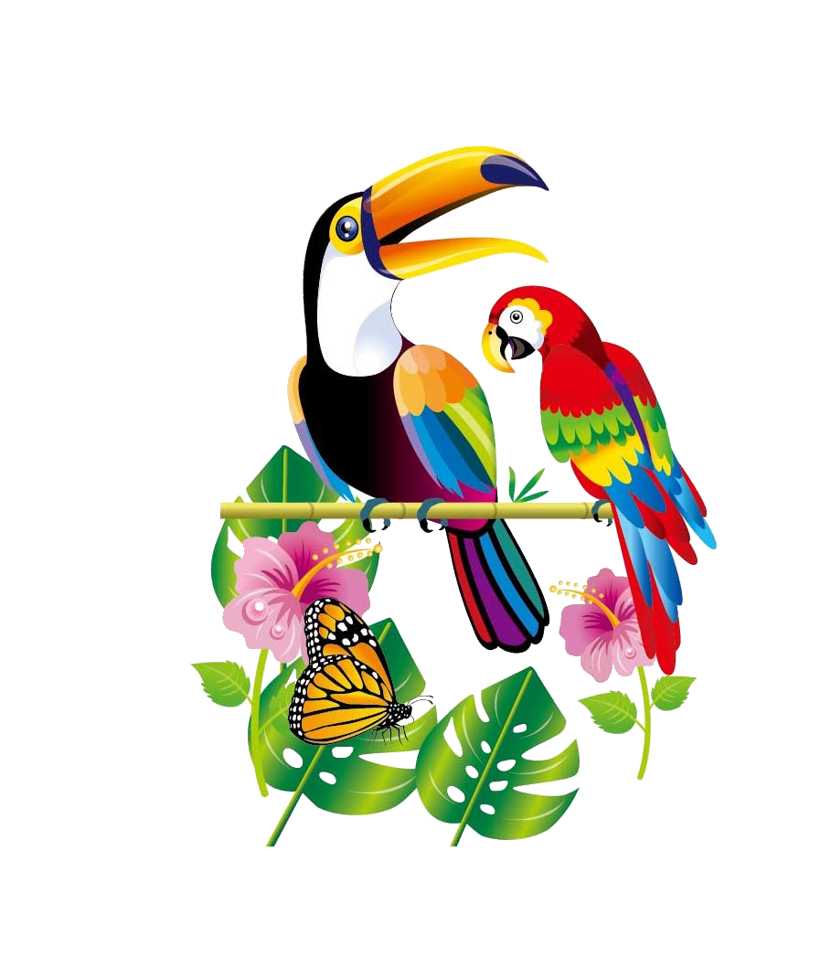 Parrot bird flowers transprent. Clipart pineapple toucan