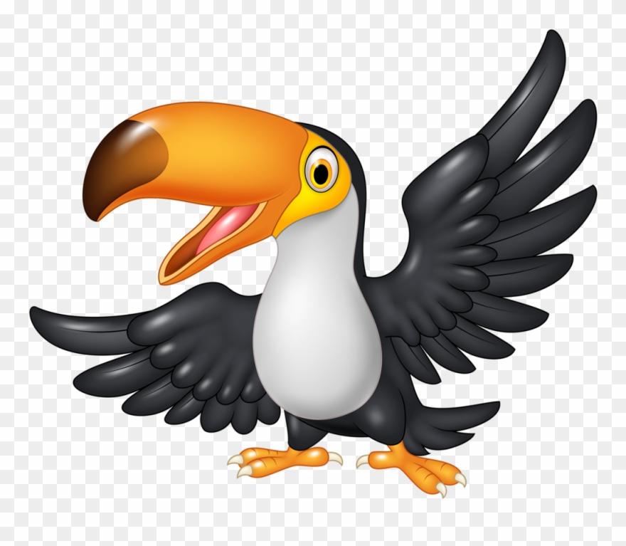 Toucan cartoon png download. Clipart birds zoo