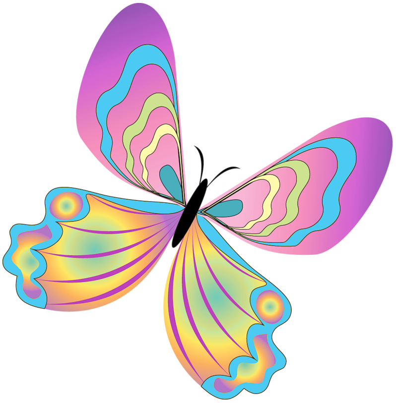 Painted png gallery yopriceville. Clipart butterfly happy birthday