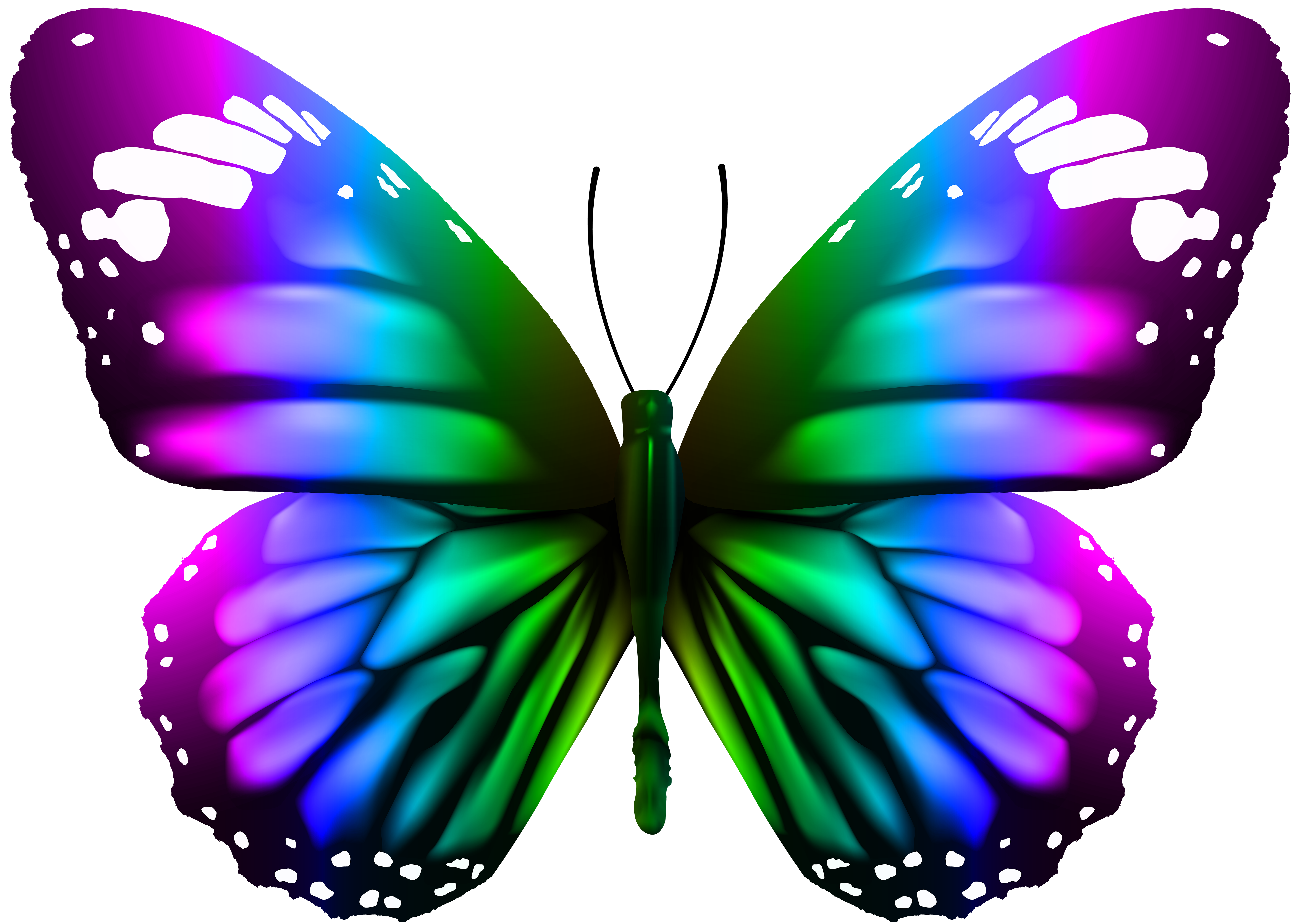 Butterfly transparent png image. Moth clipart clip art