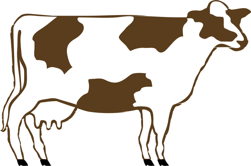 Clipart birthday cow. Download clip art free