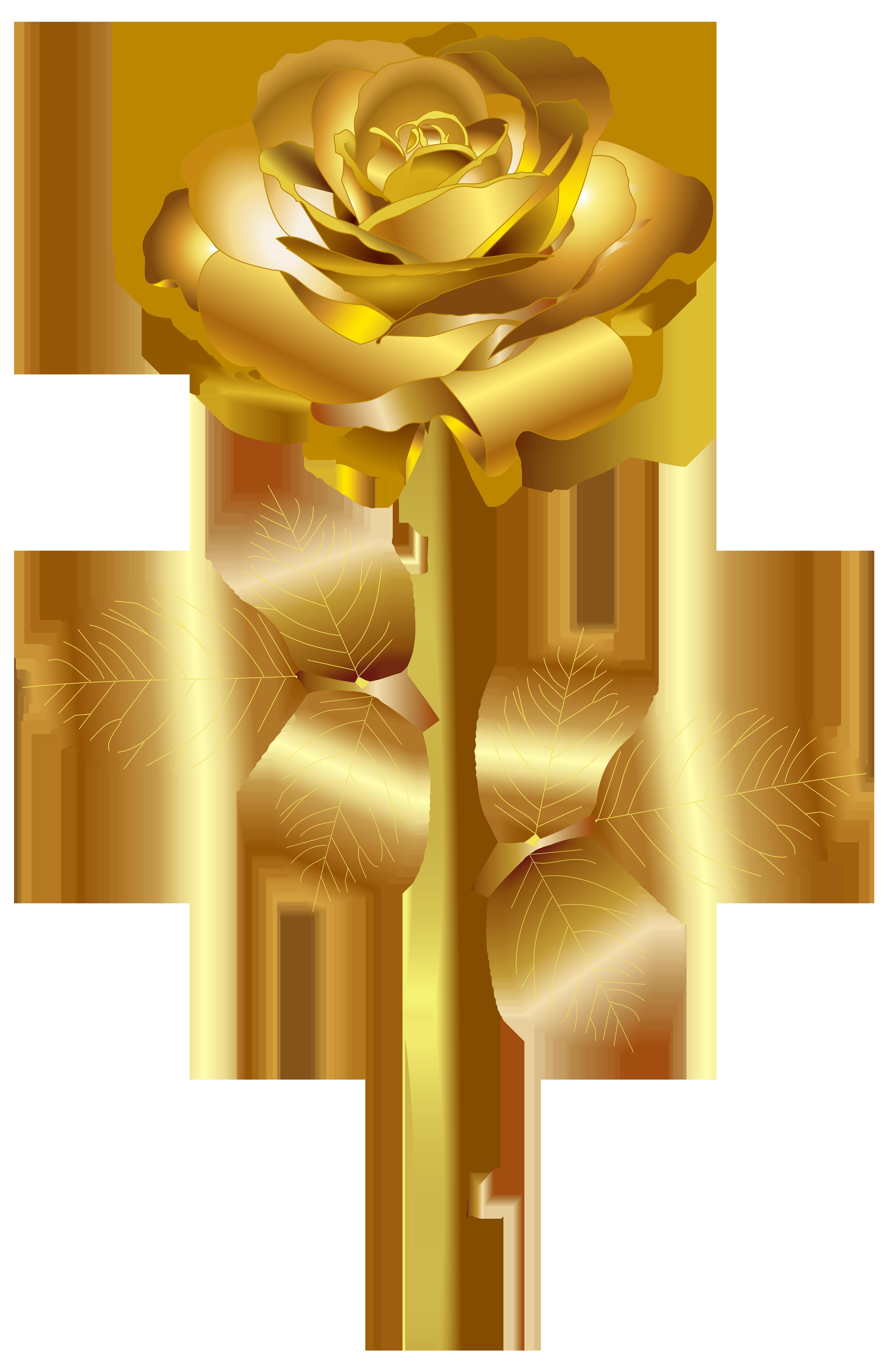 Rose clipart rose gold. Png clip art image
