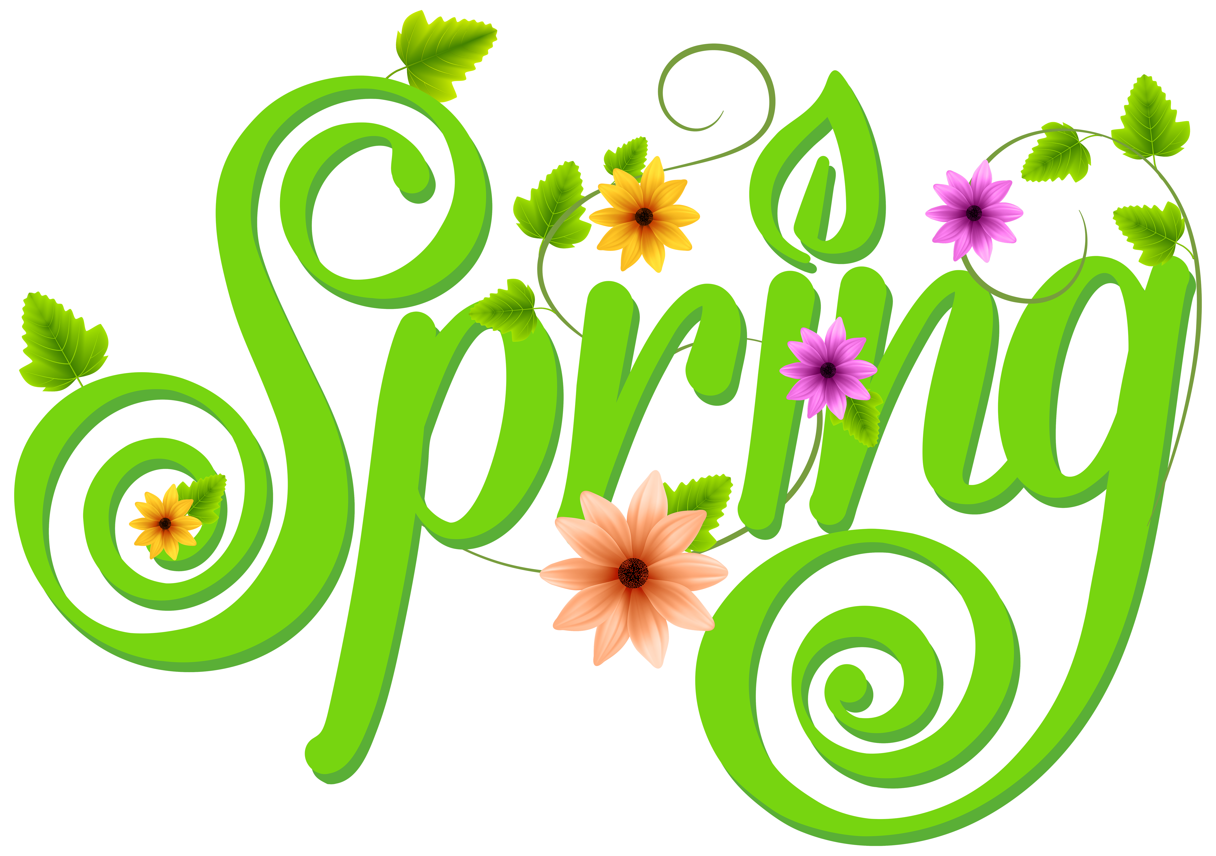 Decoration png clip art. Clipart school spring