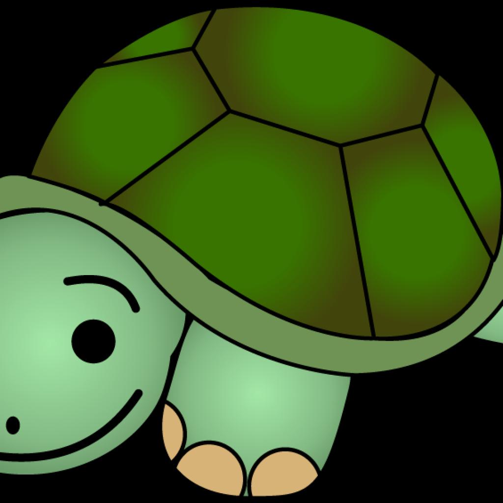 Clipart birthday turtle. New year hatenylo com