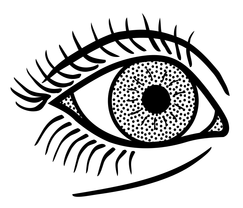 Clipart book eye. Lineart medium image png