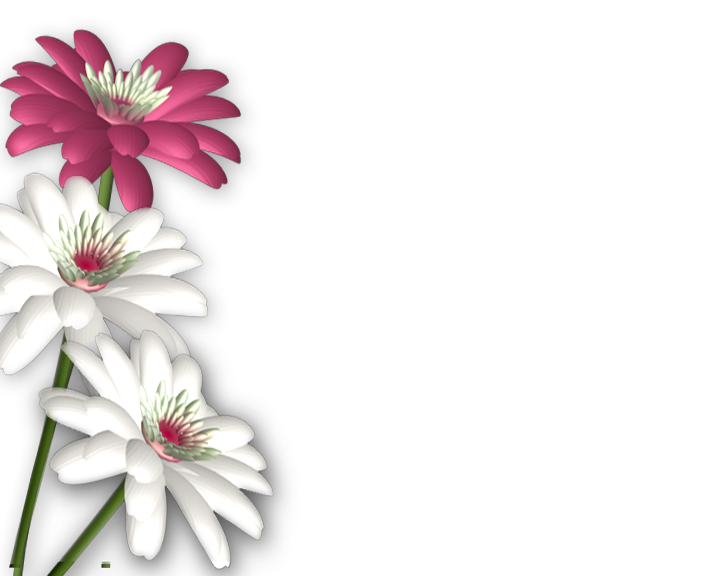 Flowers png photoshop frames. Clipart book flower
