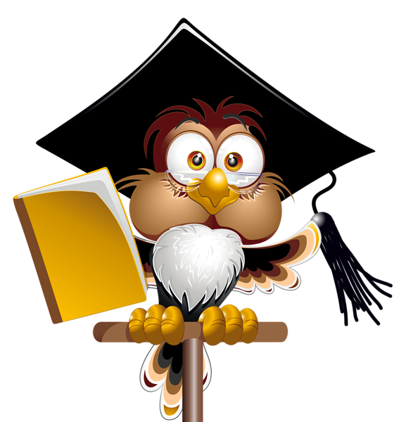 Spine clipart cartoon. Owl with school book