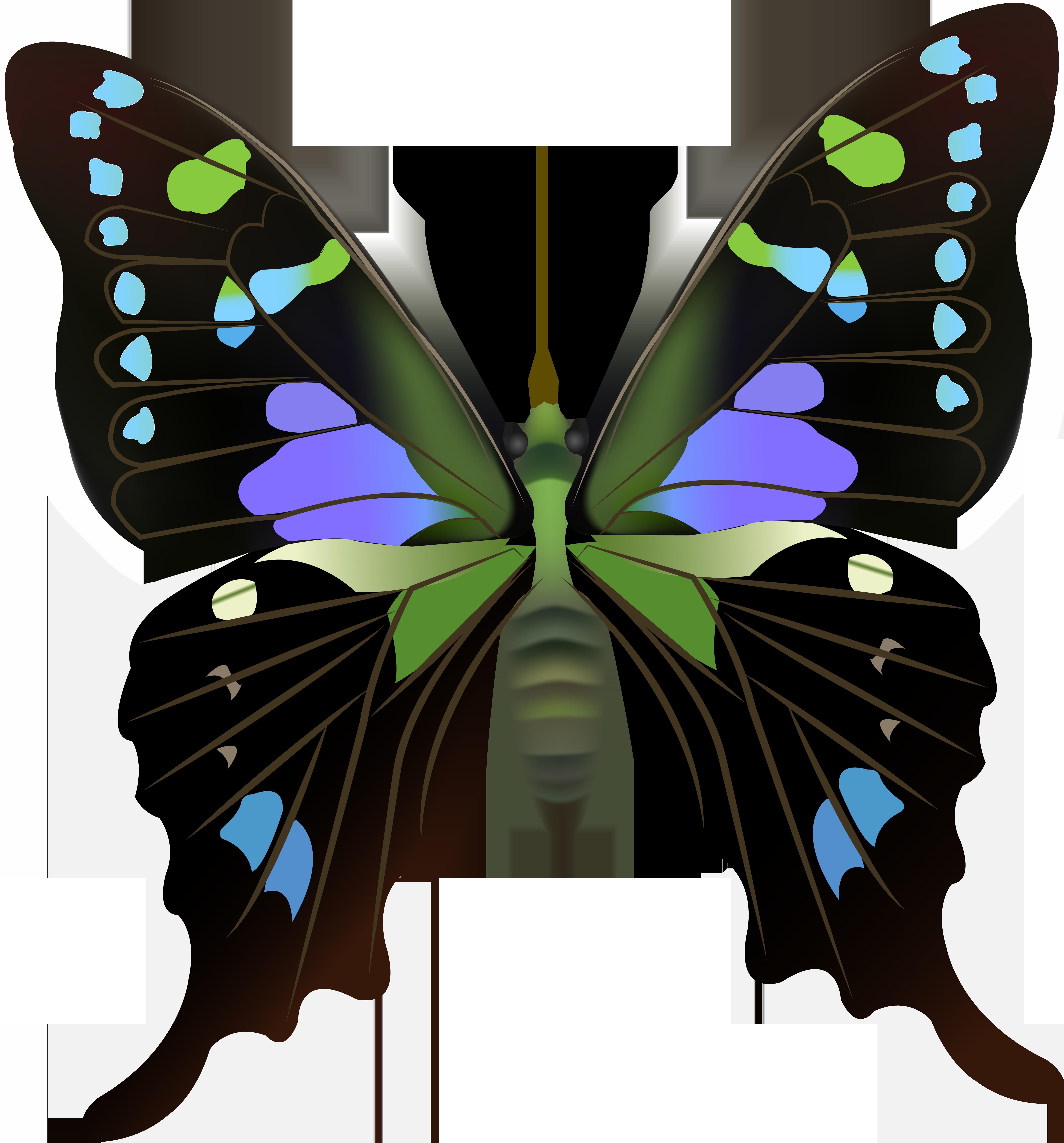 Png clip art best. Clipart butterfly diamond