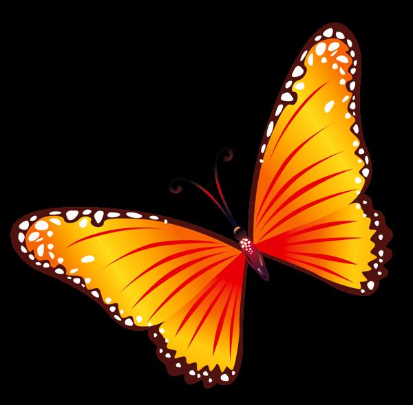 Transparent orange png mariposas. Clipart butterfly scrapbook