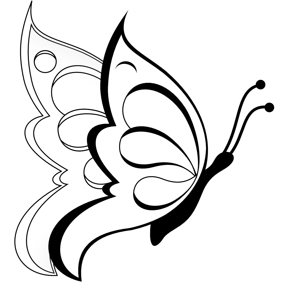 Black and white flowers. Clipart rose butterfly