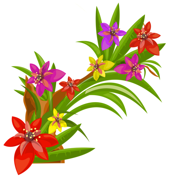 Exotic flowers decoration png. Clipart books flower