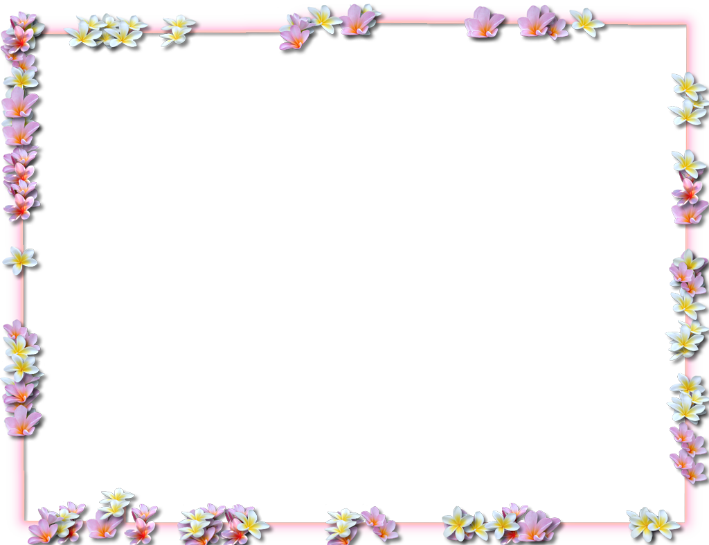 Flowers borders png transparent. Cricket clipart border