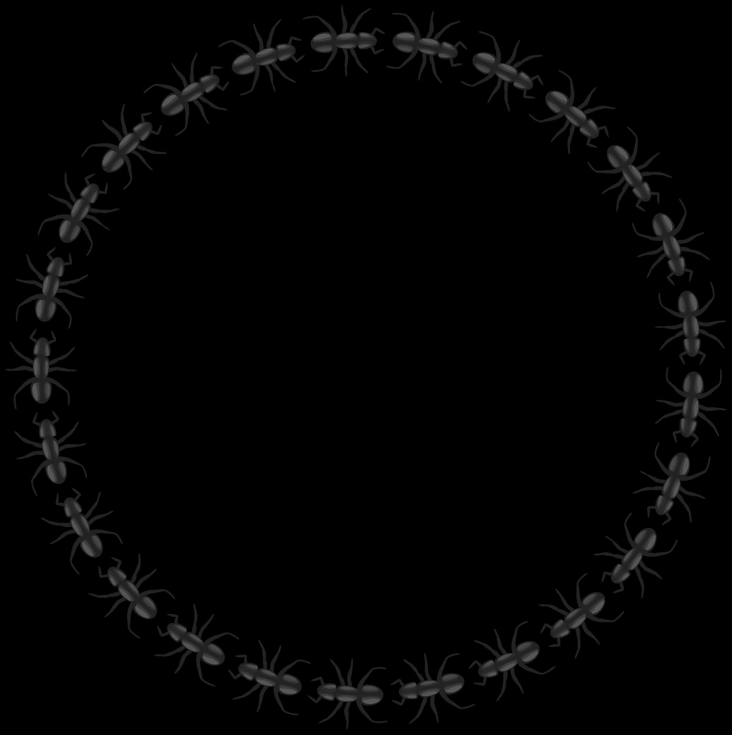 Clipart wedding circle. Ant border big image