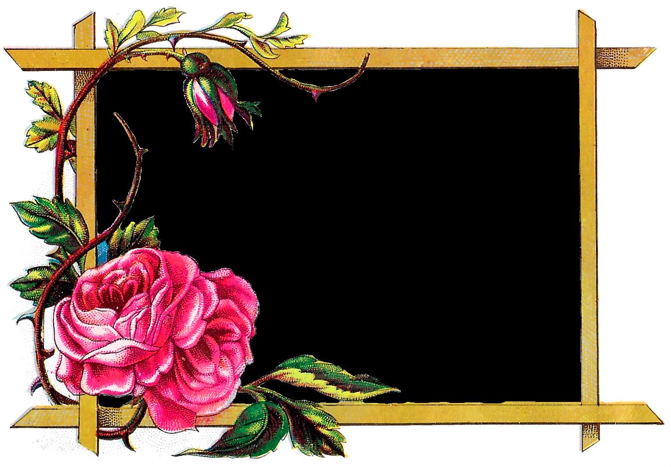 Label clipart digital frame. Antique images floral download