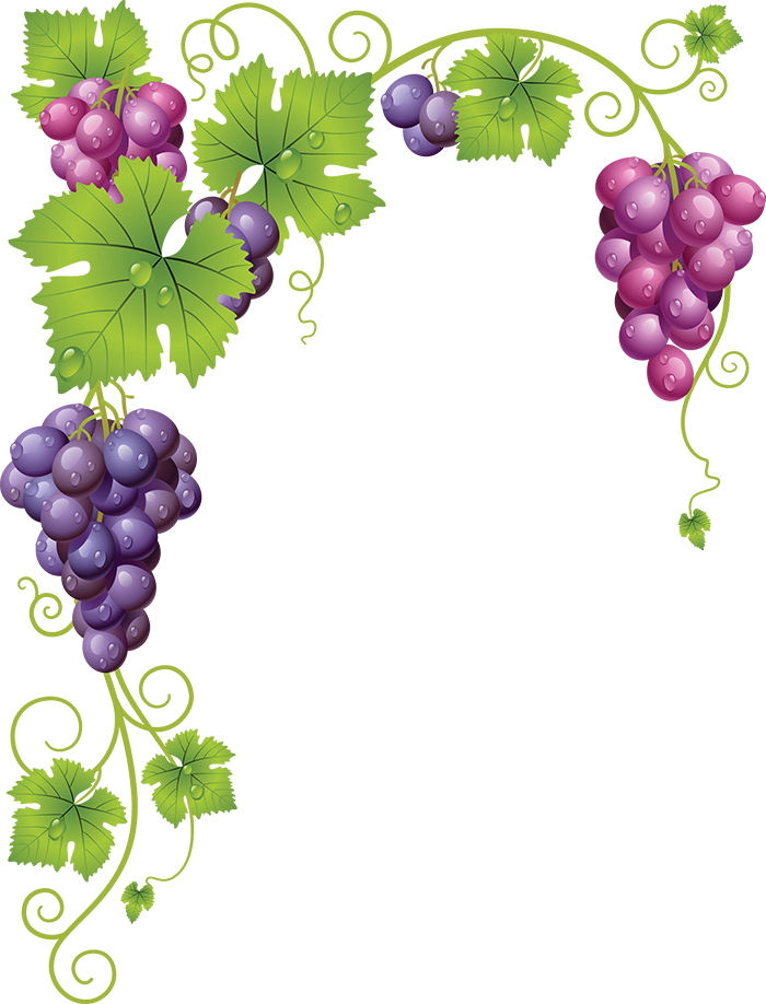Tubes fruits l gumes. Grape clipart fruit individual