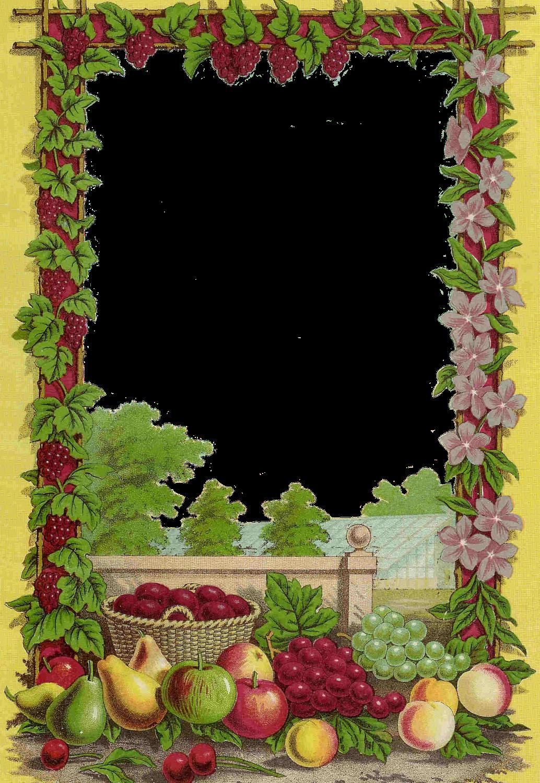 Fruits and vegetables clip. Clipart fruit frame