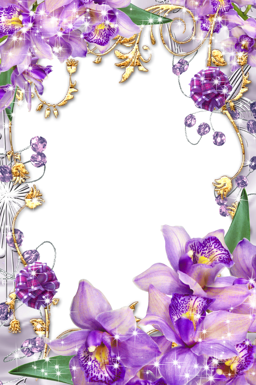 Flower borders and frames. Purple border png