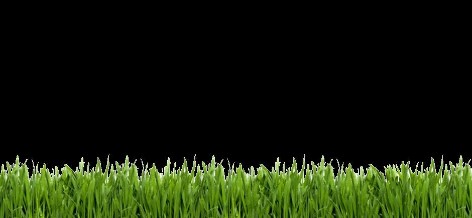 rd annual tournament. Clipart grass golf