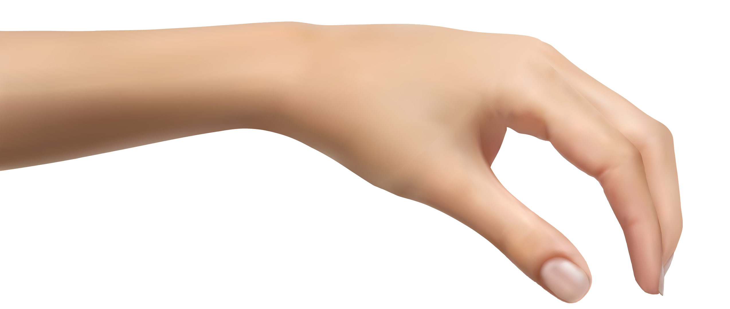 Human hand png picture. Clipart hands wrist