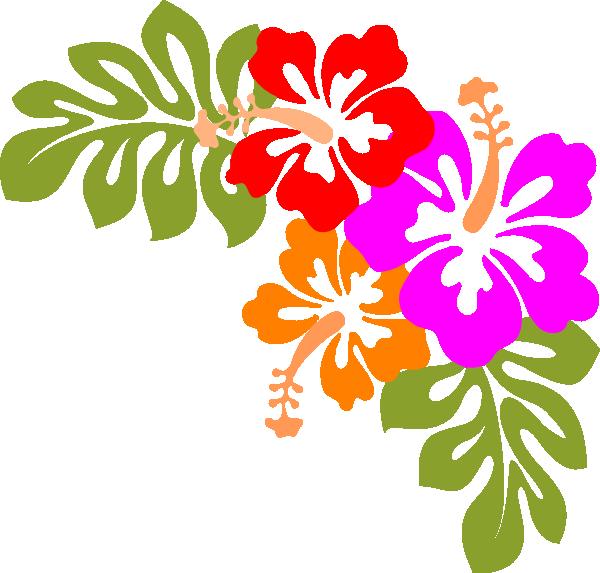 Hibiscus clipart hawaian. Clip art at clker