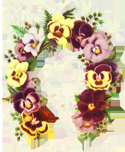 Flower borders and frames. Clipart rose shape