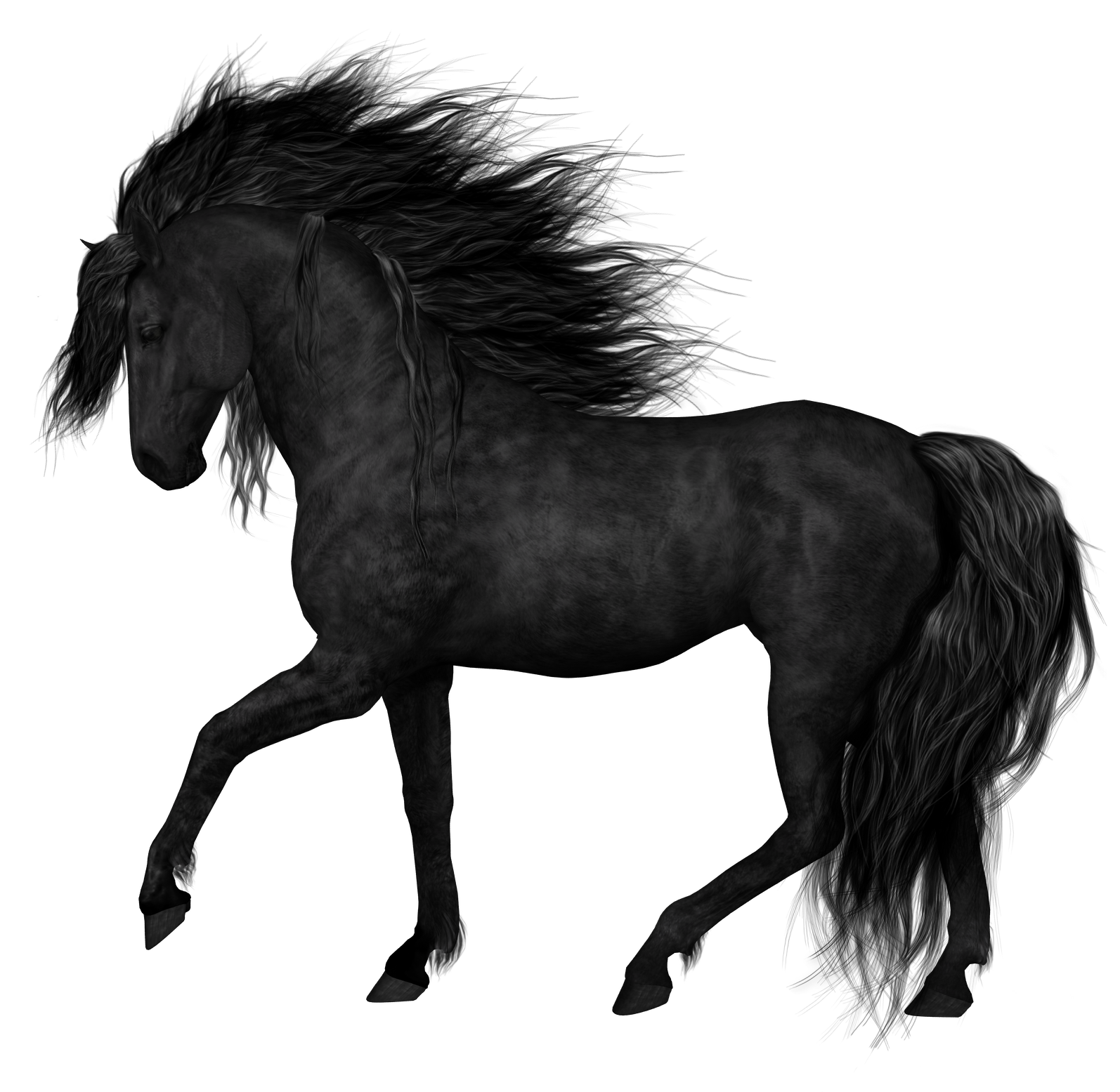 Clipart horse pony. Black png picture gallery