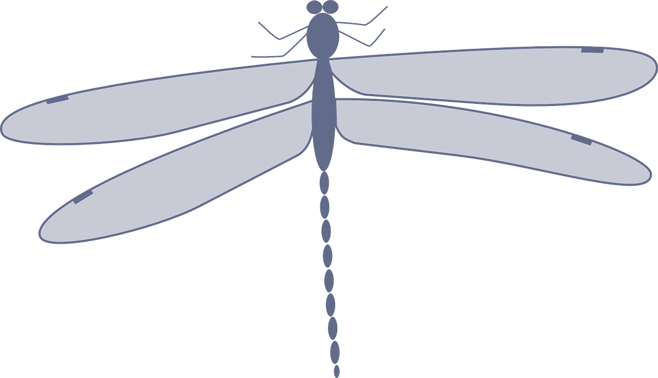 Insect animation clip art. Insects clipart dragonfly