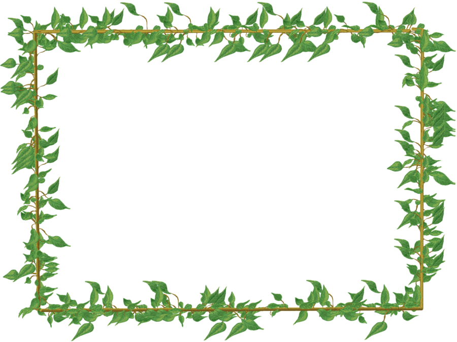 By tashadotoshnaya on deviantart. Clipart turtle frame