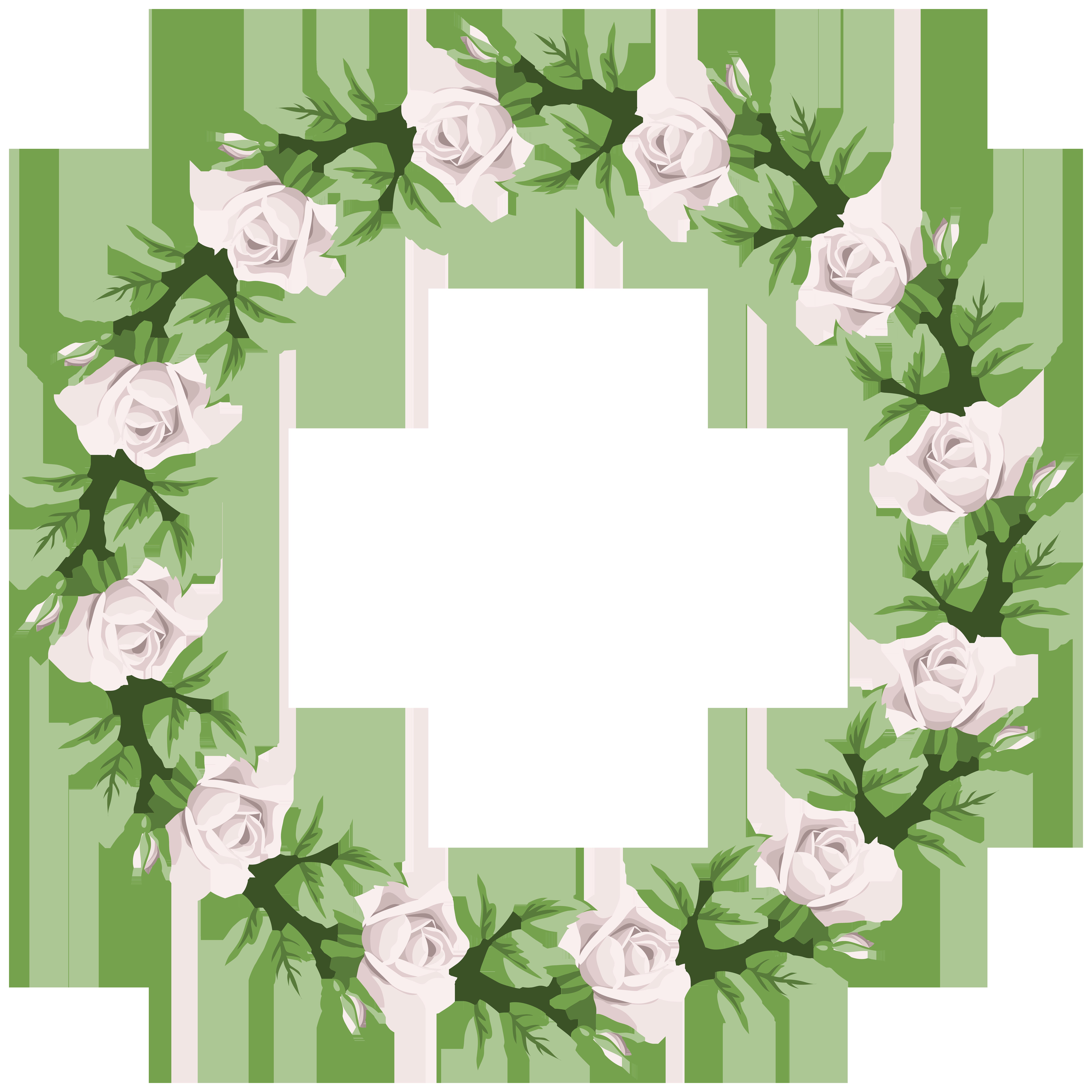 Ivy border png. White rose frame transparent