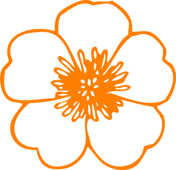 Buttercup clipart border . Orange flower png