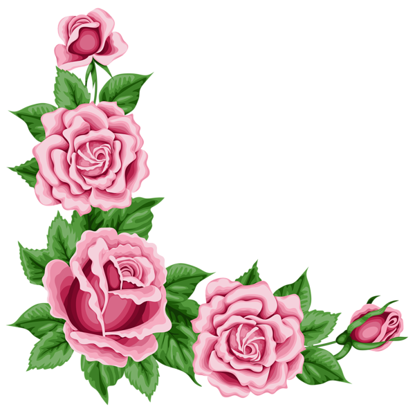 Clipart roses natural. Corner decoration png picture