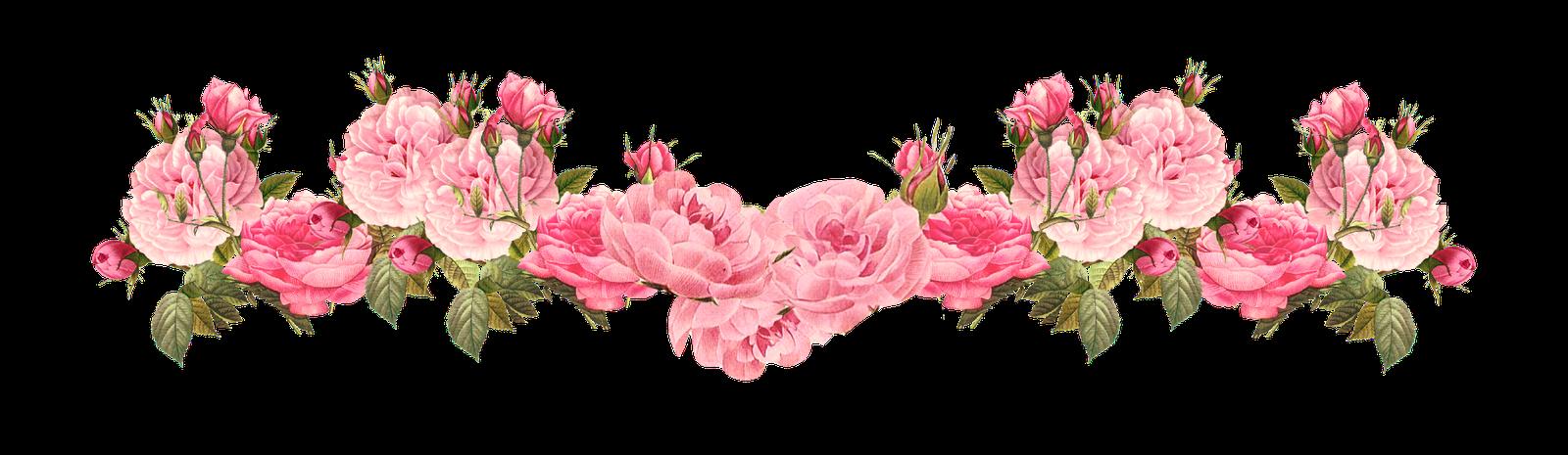 Vintage pink free borders. Garland clipart rose