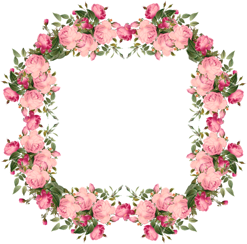 Clipart borders pink rose. Vintage free roses frames