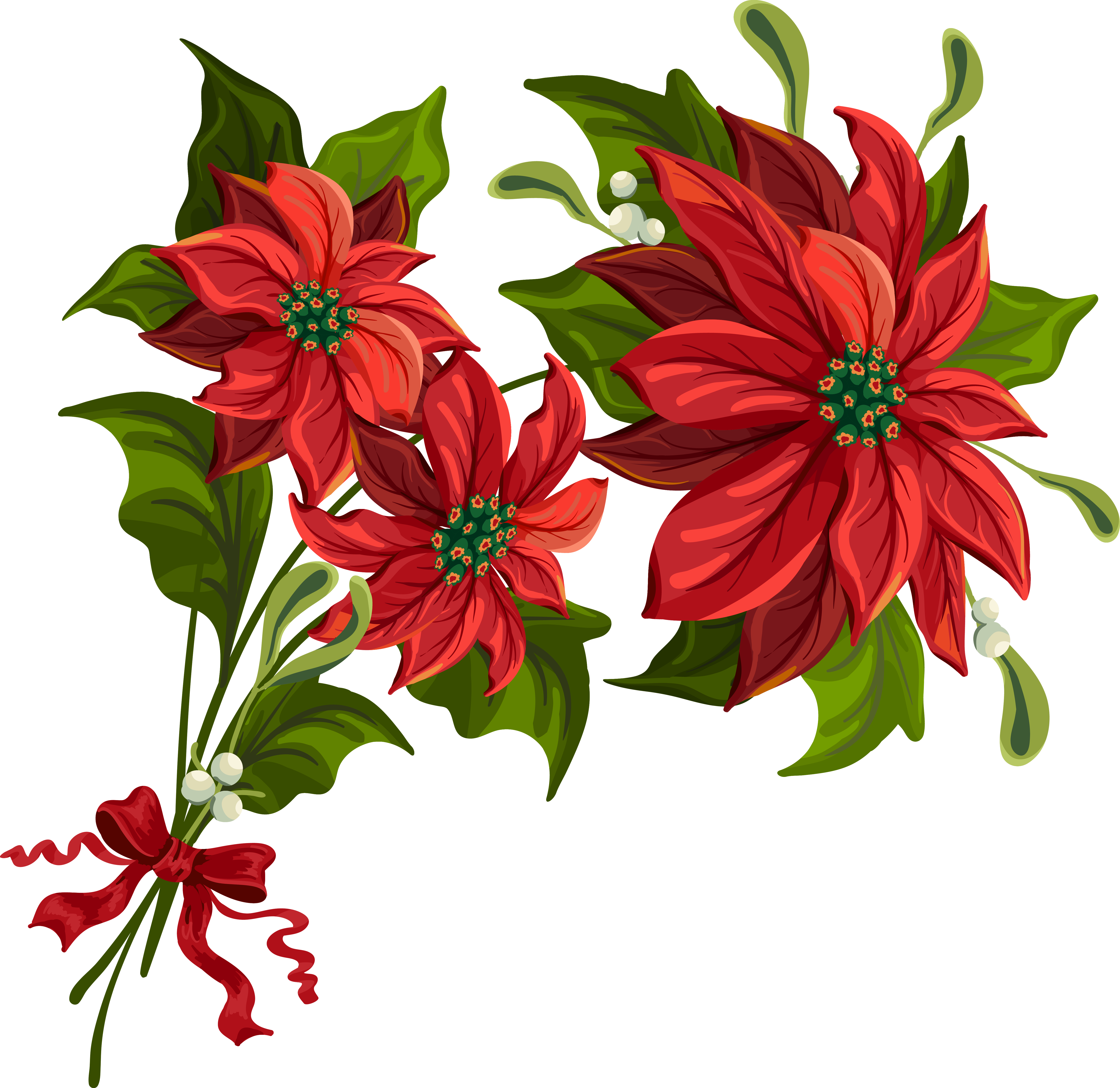 Clipart border poinsettia. Transparent christmas png gallery