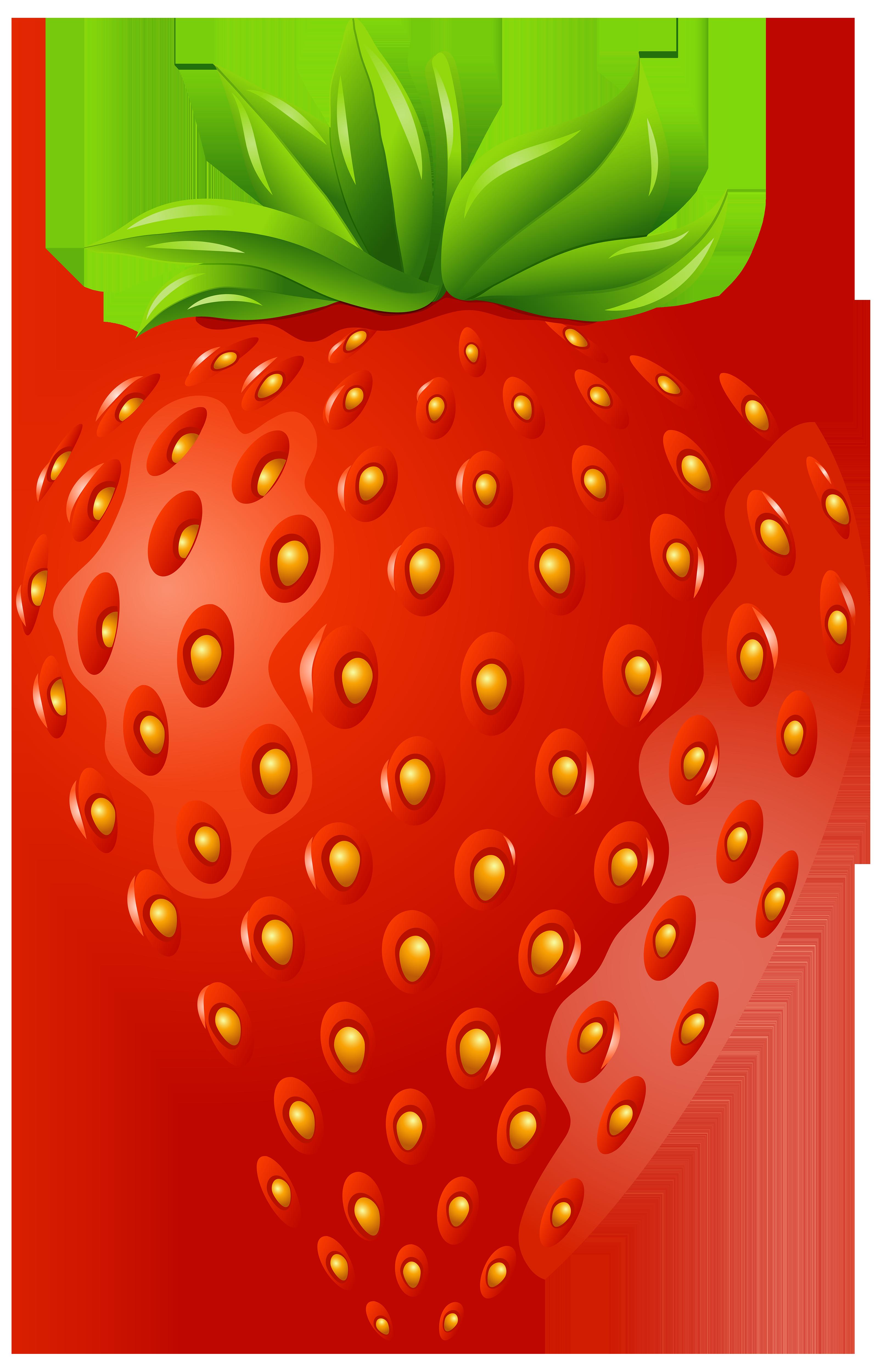 Strawberry png clip art. Clipart fruit stick