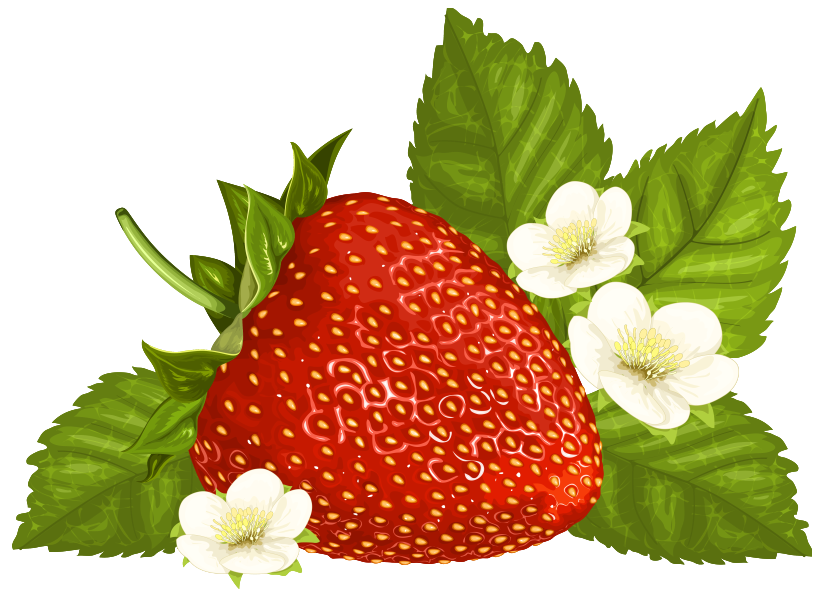 Strawberries clipart frame. Strawberry png image gallery