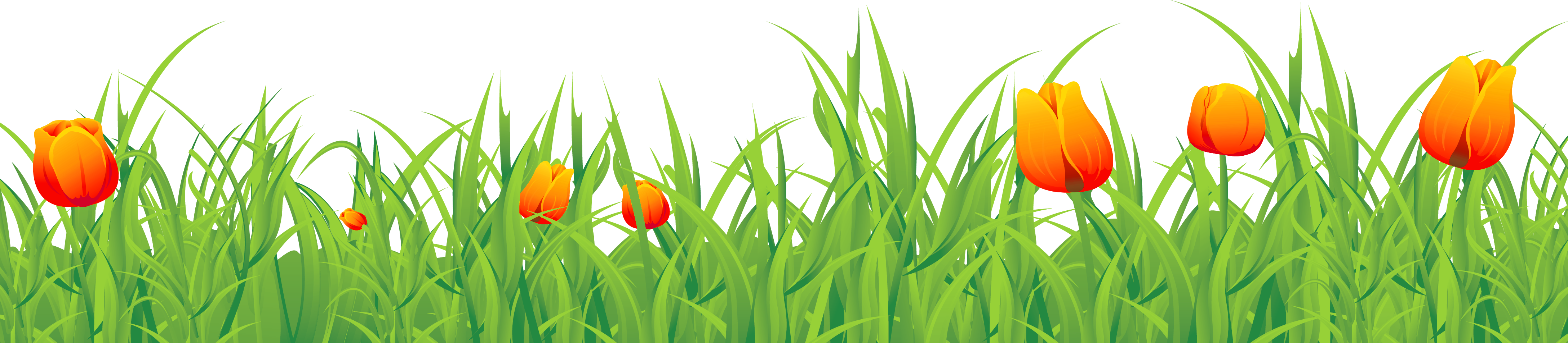 Grass ground with tulips. Fence clipart tulip
