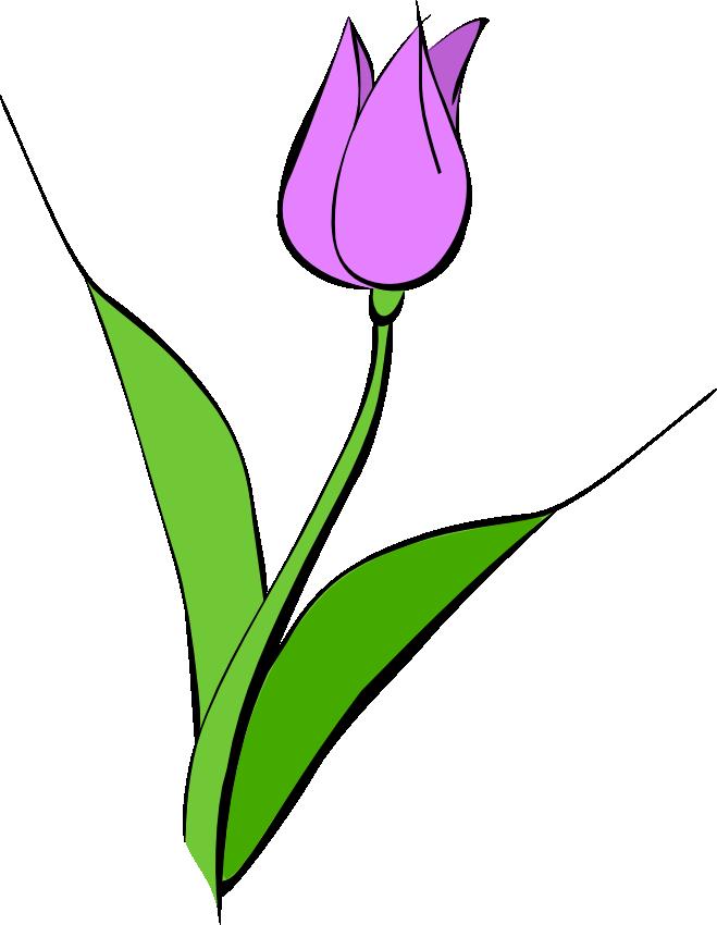 Clip art border panda. Easter clipart tulip