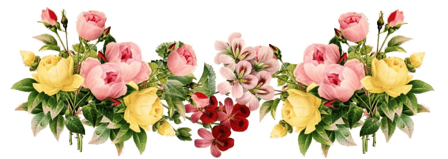 Flowers etikette und blumenrahmen. Vintage flower png