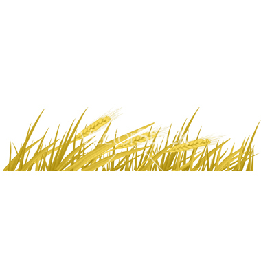 Wheat clipart frame. Free border cliparts download