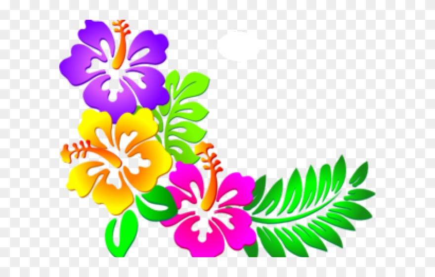 Design corner border designs. Hibiscus clipart flower boarder